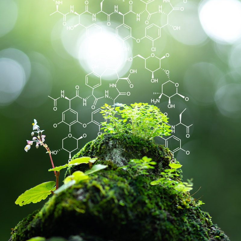Naturethics